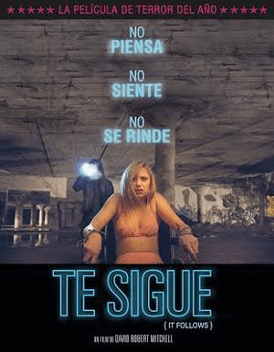 IT FOLLOWS AFICHE