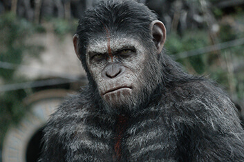 DAWN OF THE PLANET OF THE APES 01